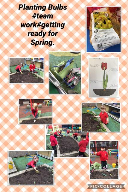 October  Foundation are getting ready for Spring and are busy weeding and planting bulbs.