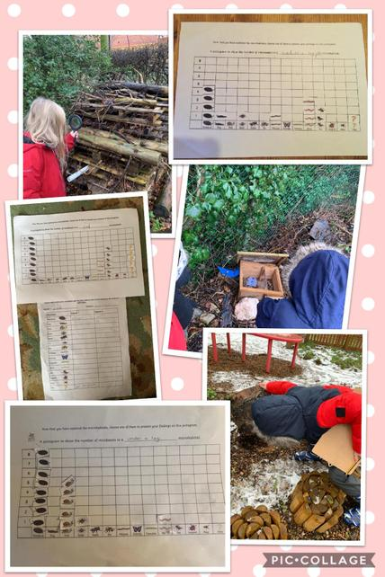 Searching for Micro-habitats in Y2 science and presenting findings using pictograms