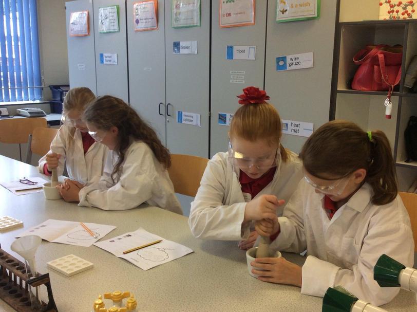 Y5 Science GDS workshop at Nottingham High