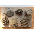 Year 1 natural clay sculptures