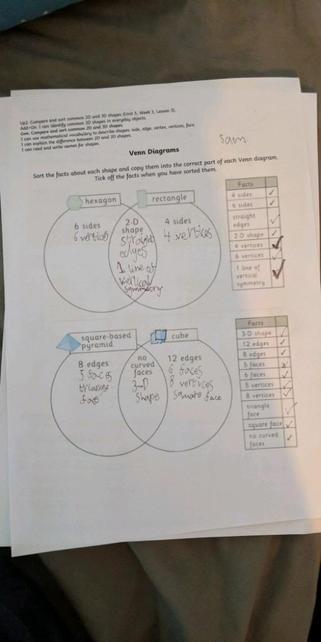 Y2 sorting shape properties using Venn diagrams