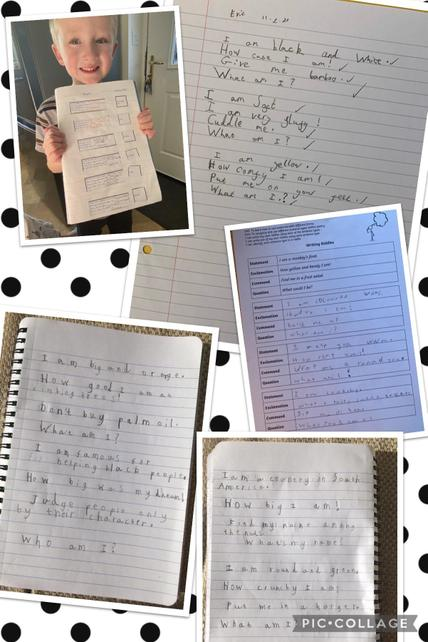Riddle writing in Year 2 using the four sentence types