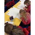 Writing Information Texts about Meerkats and The Kalahari Desert in Literacy