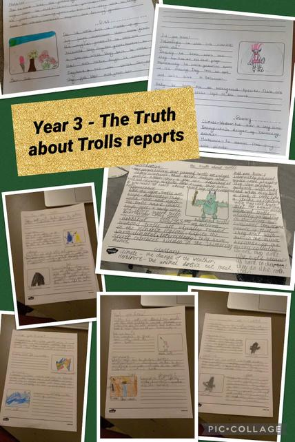 We were inspired by The Stone Troll stories to become experts on trolls and write reports