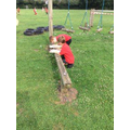 Outdoor maths for Y3