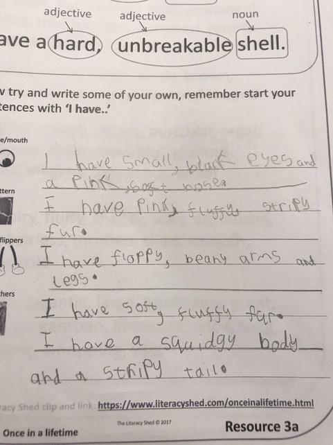 Year 1's super work as we build towards writing our 'What Am I?' poems