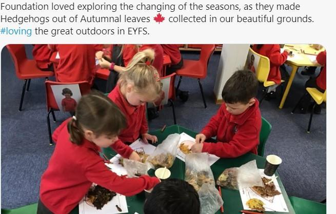 F  loved exploring the changing seasons, making hedgehogs from flora & fauna from outside.