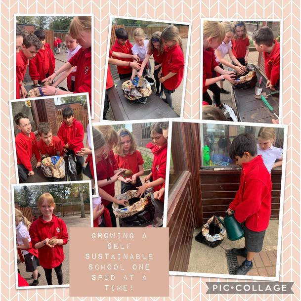 Year 5 Take Care of themselves