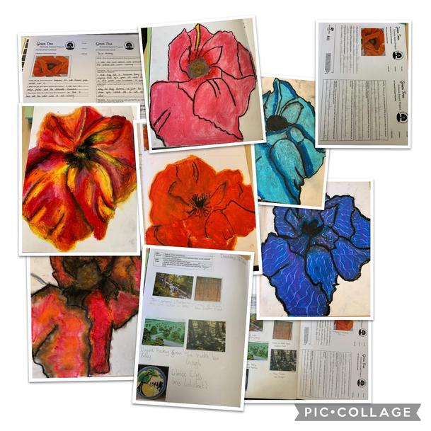 Y6 poppies in the style of Georgia O'Keefe working towards Woodland Trust Platinum Award