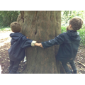 We joined with our friends to hug trees too.