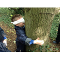 Hugging a tree helped us find out how big it was.