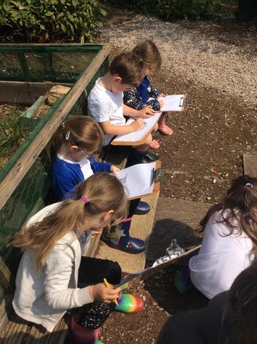 Sketching in the secret garden