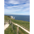 Day 3 Studland beach and walk to Swanage