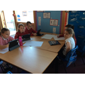 Researching Stone Age animals to design a poster.