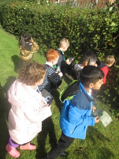 We walked around our outdoor area seeing what we could spot.