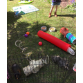 Mrs Smith- an obstacle course for the guinea pigs!
