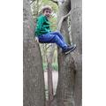 Henry enjoying climbing trees.