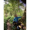 Arthur is mesmerised by trees this week