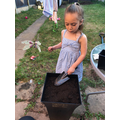 Serenity has been planting some flower seeds.