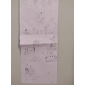 Daisy's story map is very detailed.