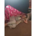 Mia has a new den!
