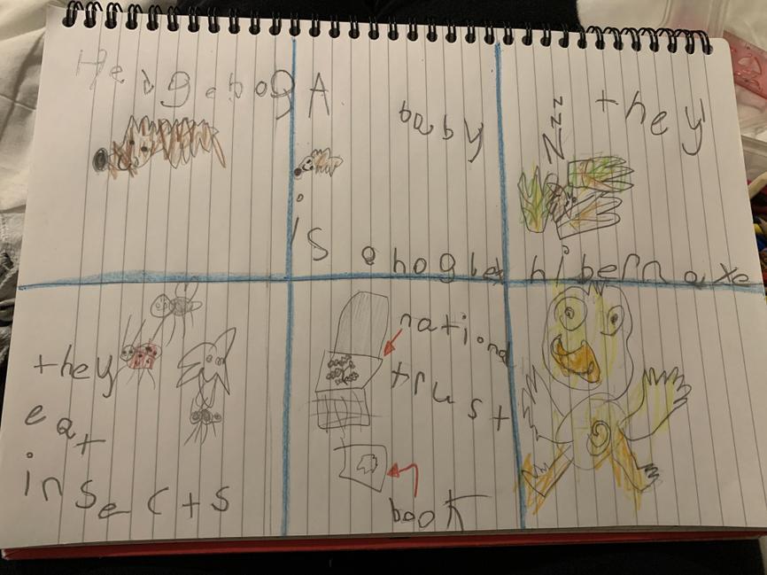 Patrick's winning storyboard