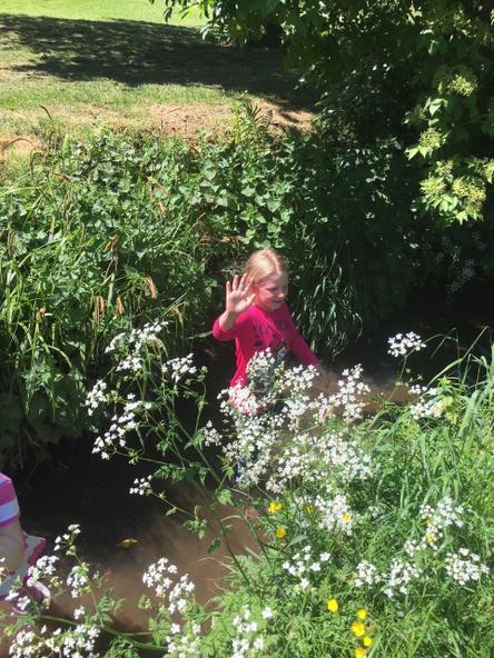 Exploring the streams