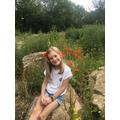 Poppy in a poppy field!