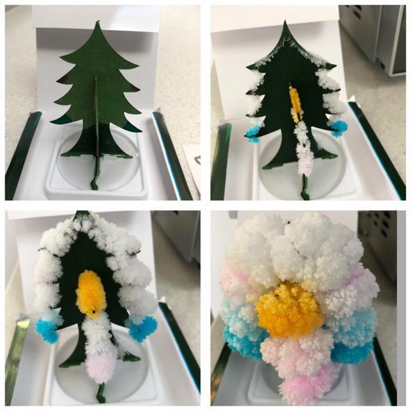 Ethan's crystal tree kit
