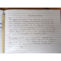 Take a read of Lily's brilliant creative writing!