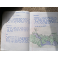 Lily's mountain writing