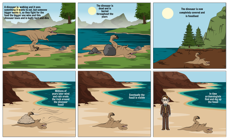 Story board about how fossils are made