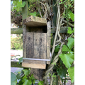 Ruby's homemade birdhouse