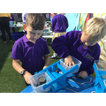 In Maths we have been measuring, we used balance scales to measure the mass of objects