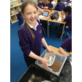 We learned about methods for extracting gold!