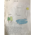 Remey's diagram of the water cycle