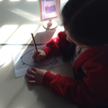 Our budding artists working on their frog drawings