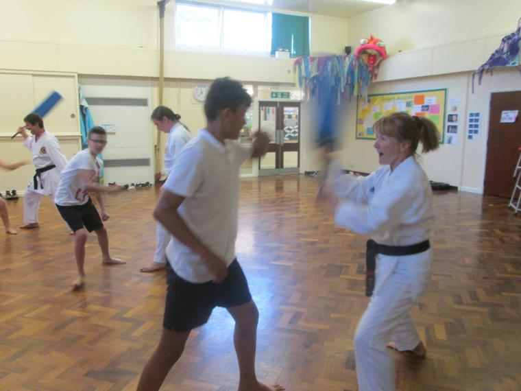 Karate Workshops