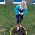 Lifting the turf.