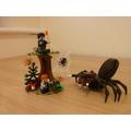 'Tarantula Forest' by Daisy