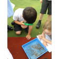 We loved pond dipping