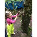 We created mud sculptures on trees