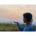 A beautiful Indian sunset