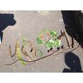 Year 4 Eco Art