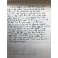 Lorcan's amazing forest school essay