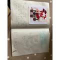 Fraser's Science Plant Book