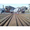 Dorothy 6G- Pigeon