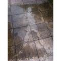 Millie's rain shadow- Oak Class
