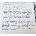 Leila's persuasive letter