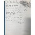 Lexi's animal poem
